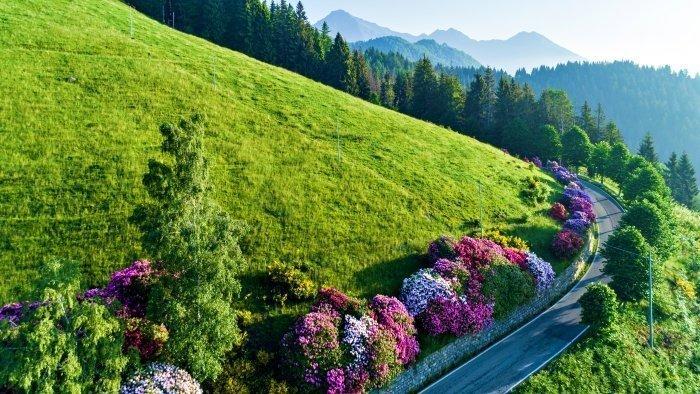 Panoramica Zegna in Moto itinerario piemonte strada percorso bici