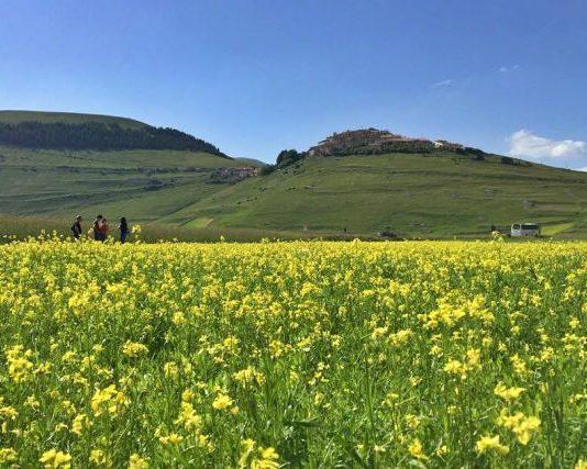 itinerario moto umbria castelluccio norcia tre valli umbre valnerina fioritura fiorita
